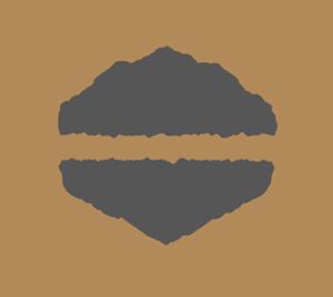 tontrix-film-bronze award-Reg